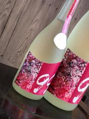 日本酒『Ocean 99 凪~Spring~』