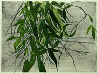 hanga1-4
